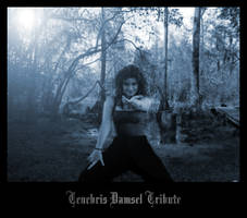 Tenebris Damsel Tribute by CultusSanguine