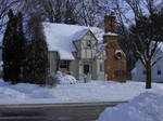 Snow Snow Snow by CelixDog04