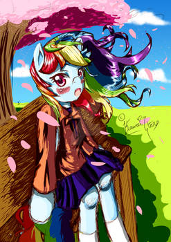 Rainbow Dash Asks