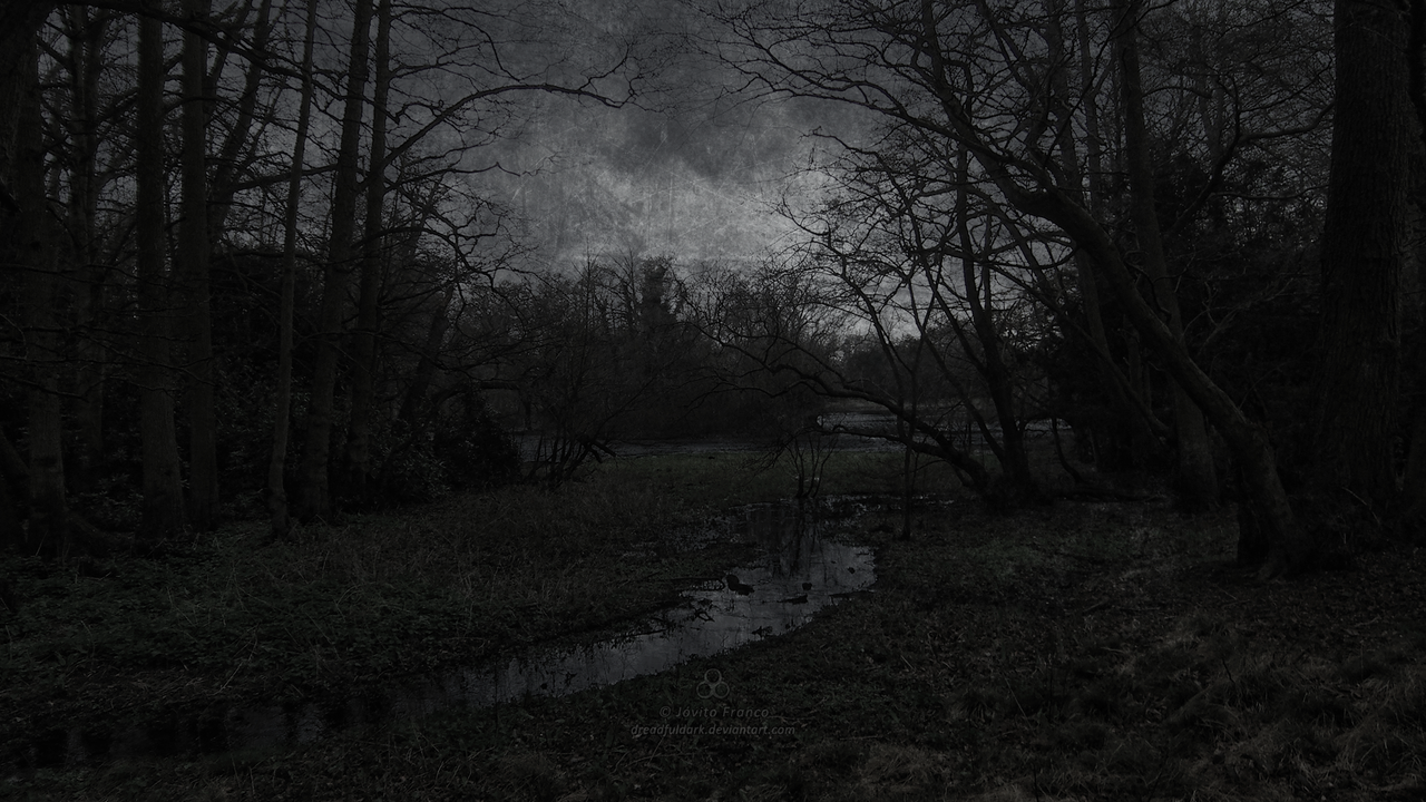A sote mocsar (A dark swamp) by dreadfuldark