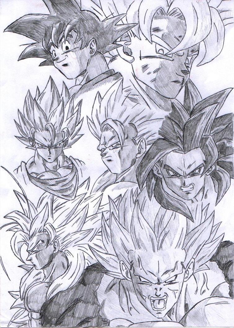 Goku super saiyan forms by pete tiernan