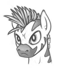 Male zebra character portrait 01 by Samaerro