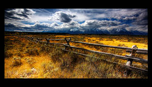A Pastoral Immensity