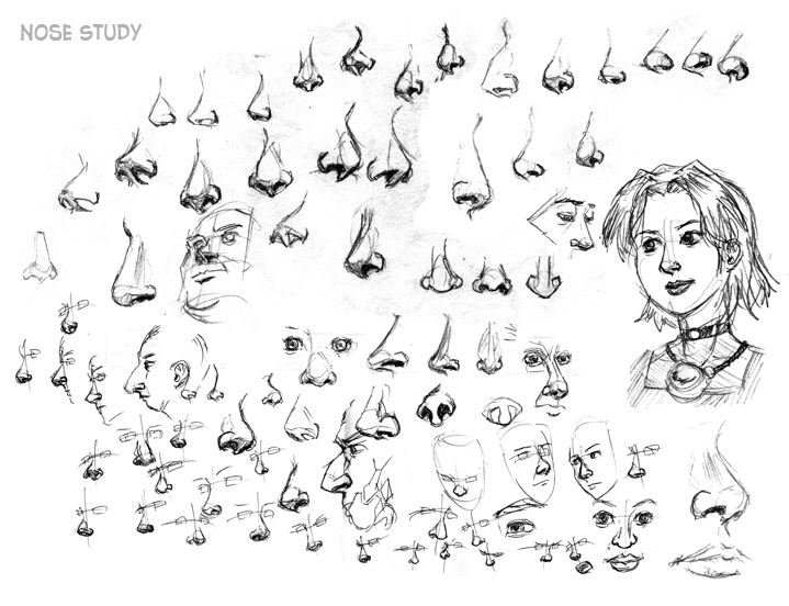 Nose Studies By Ultorgabrihel On DeviantArt