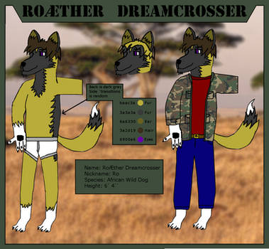 Roaether's Ref 2.0 by Roaether