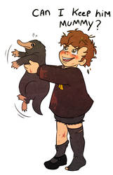 Hogwarts Pre-School Newt Scamander by Arkham-Insanity