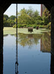 Kilver Court Gardens (2013 07 14 0052)