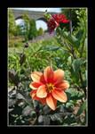Kilver Court Gardens (2013 07 14 0002)