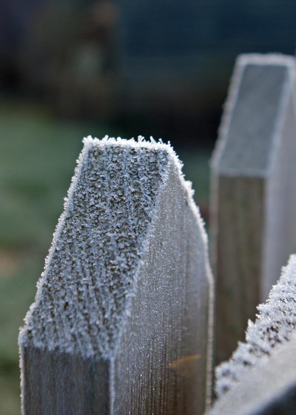 Frost 20131229-3