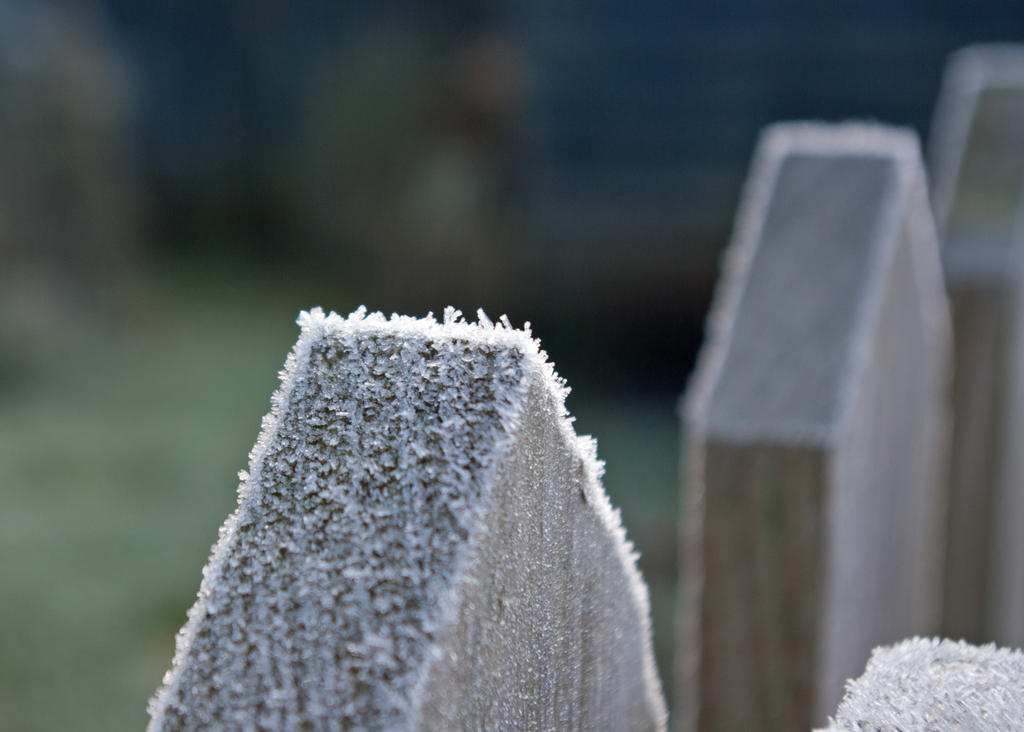 Frost 20131229-2