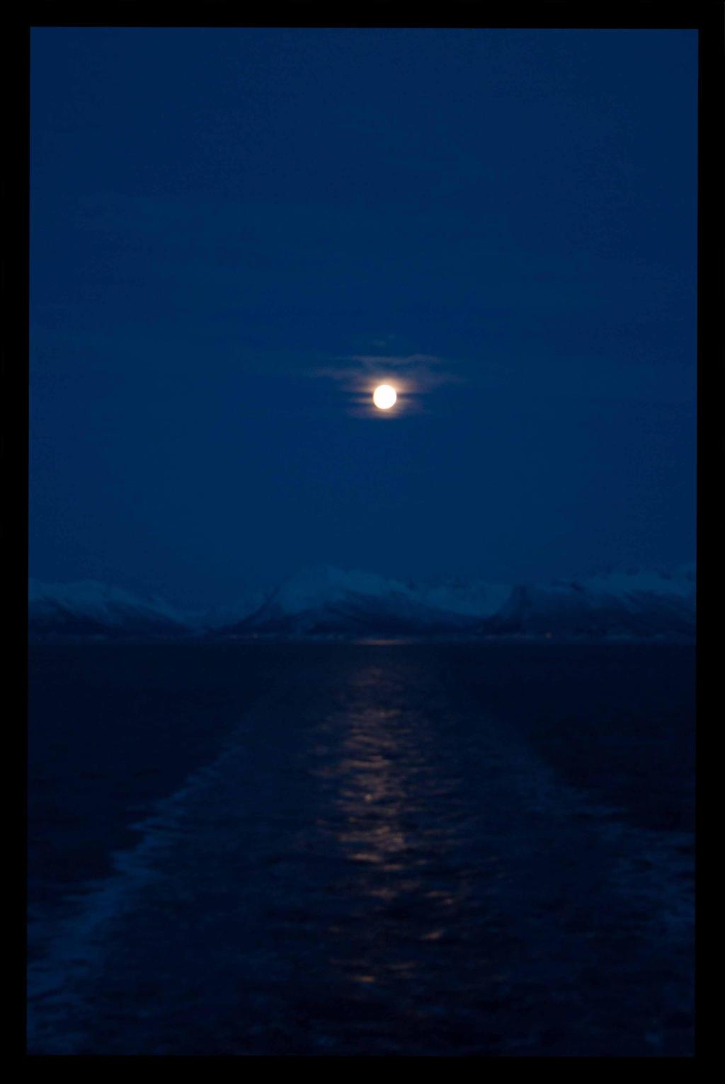 Norway - 2013 12 14 0621 by korenwolf