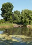 Mells pond (2013 07 13 0020)rur