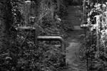 Mangotsfield Station - Footpath