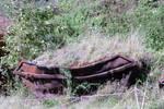 Abandoned Skip