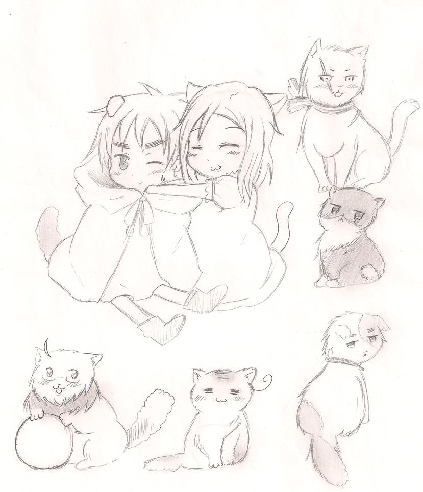Catalia by animegirl77