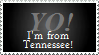 I'm From Tennessee by VVraith