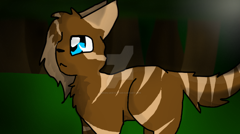 A drawing of a cat outside at night by Bindiluckycat