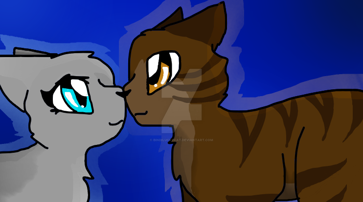 Dovewing and Tigerheart by Bindiluckycat