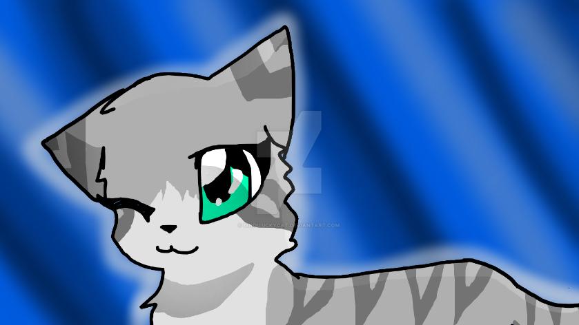 Cat by Bindiluckycat