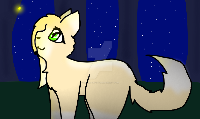 firefly by Bindiluckycat