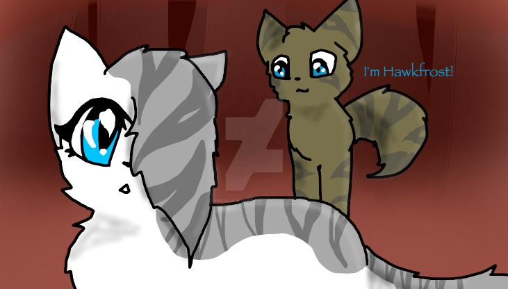 Ivypool's first day of training by Bindiluckycat
