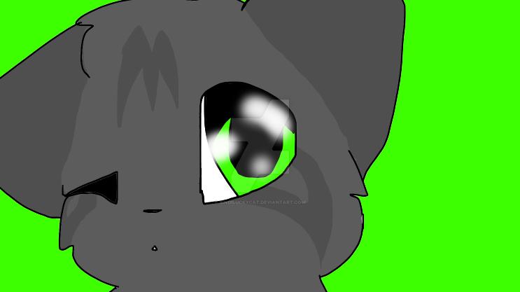 Mew? by Bindiluckycat