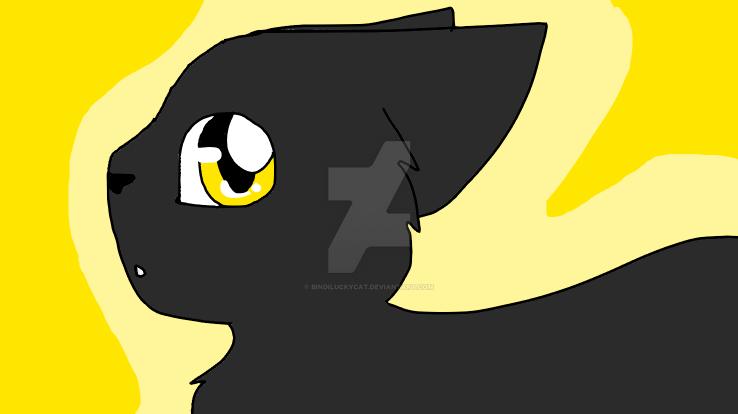 black cat! by Bindiluckycat