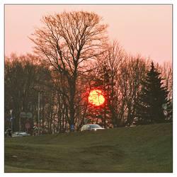morning sun by kristapsh