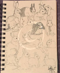 Lilly-Lamb Sketchbook 2018 Part 31