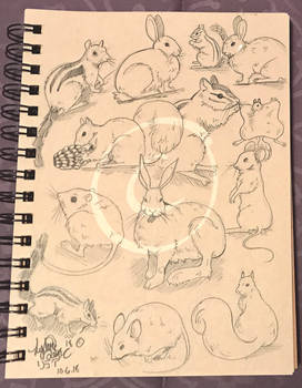 Lilly-Lamb Sketchbook 2018 Part 33