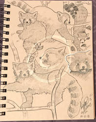 Lilly-Lamb Sketchbook 2018 Part 35