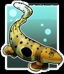 Shark Week: Epaulette Shark