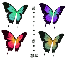 Swallowtail fairy wings stock