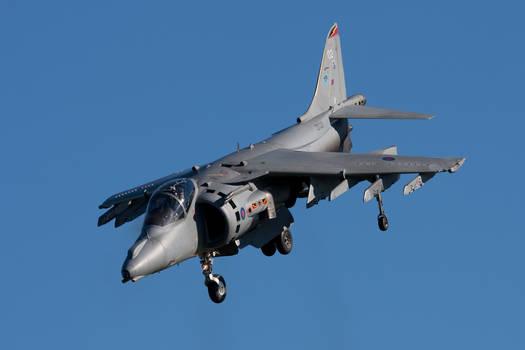 Harrier 2010 I