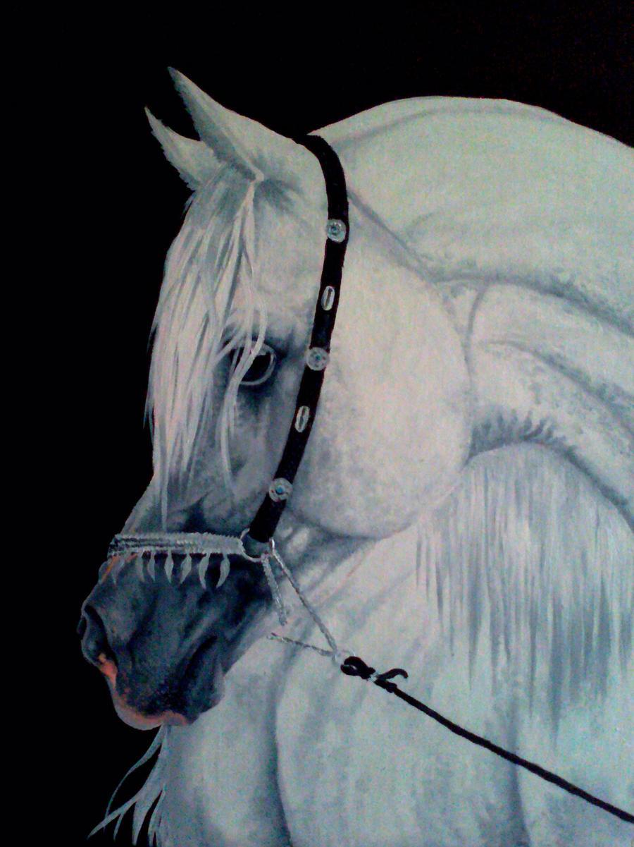 Arabian Horse 2 by Cristalhoof