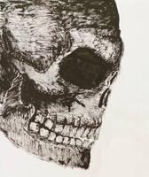 Ink Brush Skull