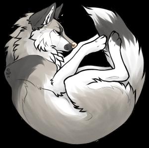 Aeko-uki's Profile Picture