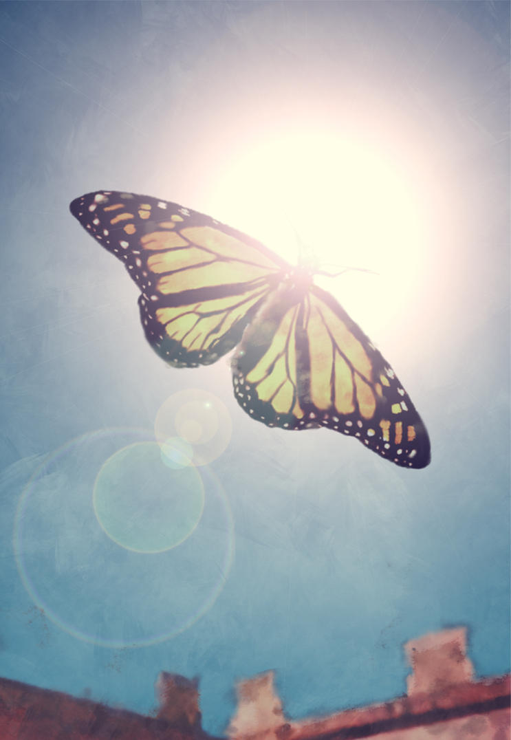 butterfly online spielen
