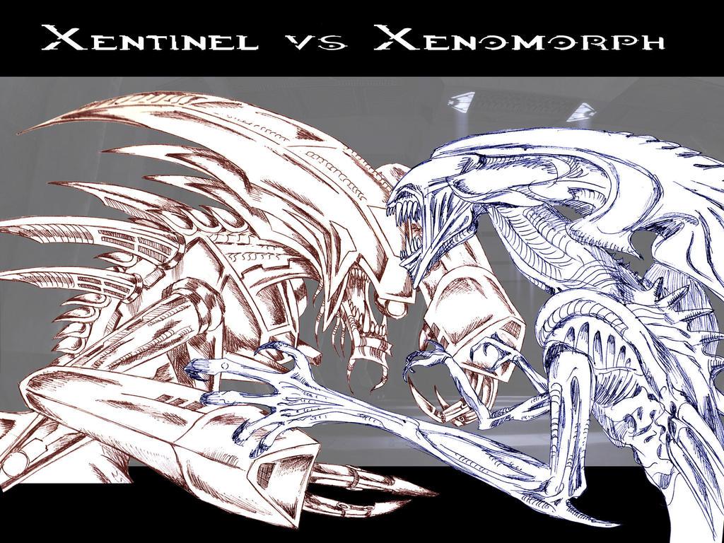 Emperor xenomorph