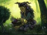 Herbalist for Talisman