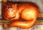 Crookshanks Sketch