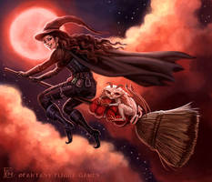 Witch's Broom for Talisman by feliciacano