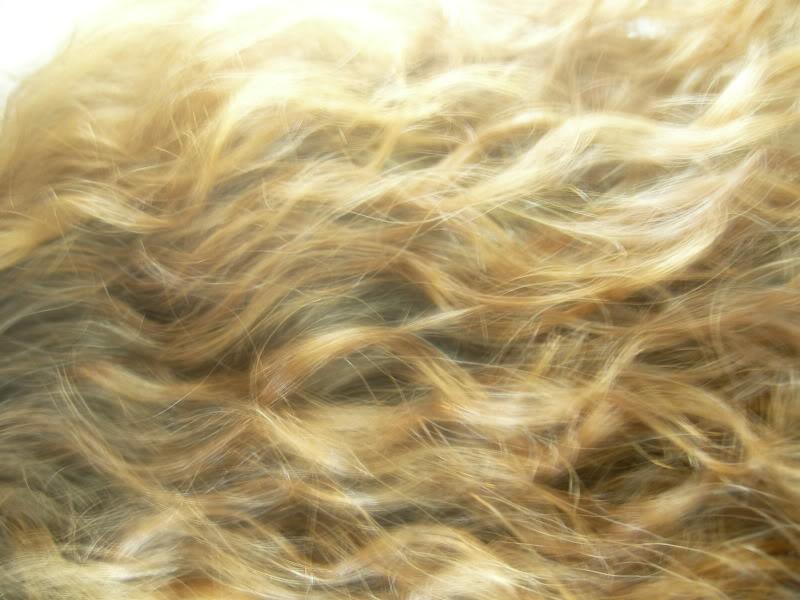 Hair by TokihaMai
