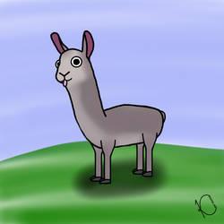 Derpy Llama