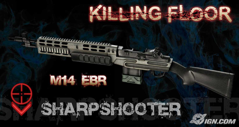 Killing Floor M14 Ebr By Electricpokemongt On Deviantart