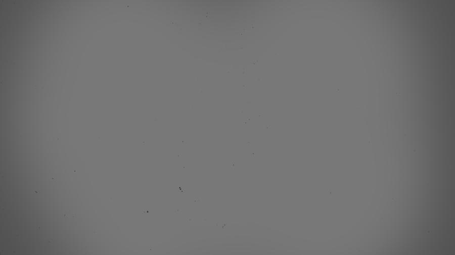 desktop wallpapers great grey - photo #46