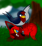 RQ - Drew and Taillow by RiuAuraeon