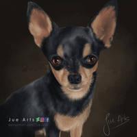 Chihuahua Pino by Jue-Arts