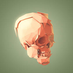 Skull Le Fort by jake