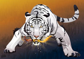 white tiger with kujang